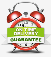 Personal Statement Writers On Time Delivery Guarantee